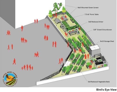 Site Plan Birds Eye View