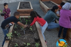 Planting for the Future!