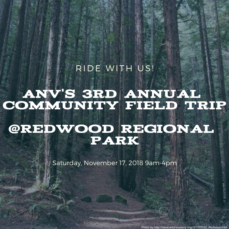 Redwood Park SM-Photo
